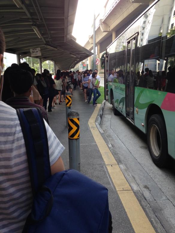 Bus-Schlange