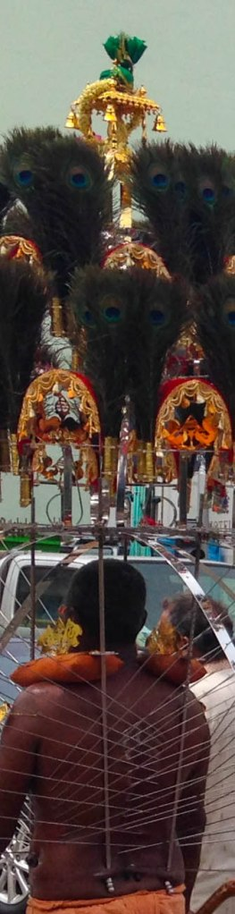 Thaipusam Festival 17_1_1453