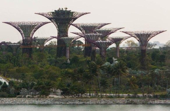 Singapur Flyer (7 von 23)