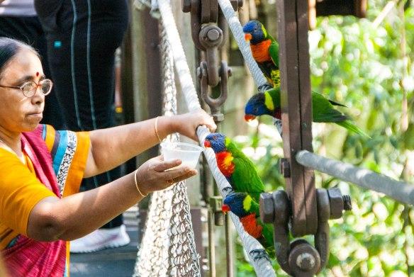 Bird Park (11 von 17)