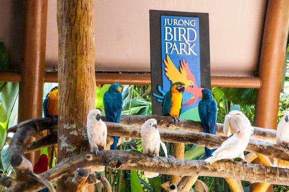 Bird Park (2 von 17)