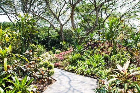 Botanic Garden (1 von 17)