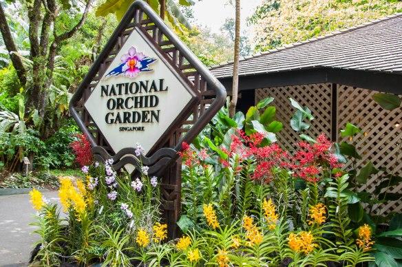 Botanic Garden (6 von 17)