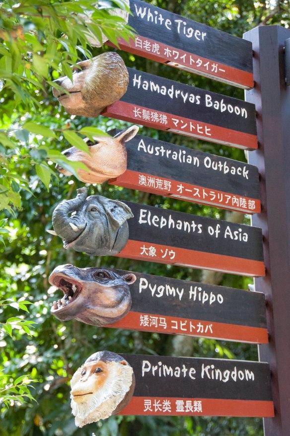 Singapore Zoo (1 von 32)