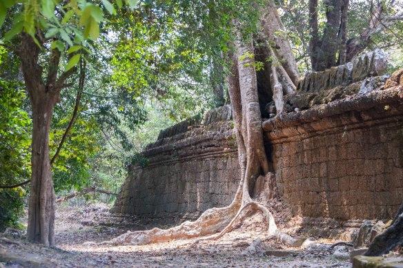 Kambotscha-Fr-Tempel (43 von 69)