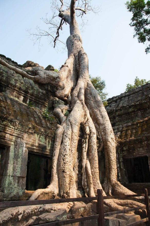 Kambotscha-Fr-Tempel (59 von 69)