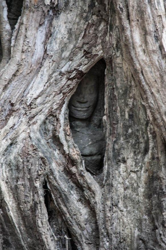 Kambotscha-Fr-Tempel (62 von 69)
