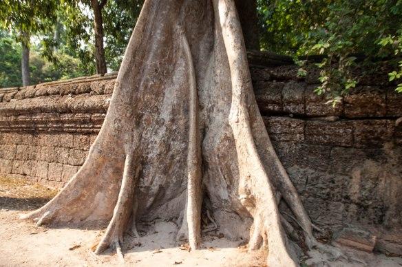 Kambotscha-Fr-Tempel (67 von 69)