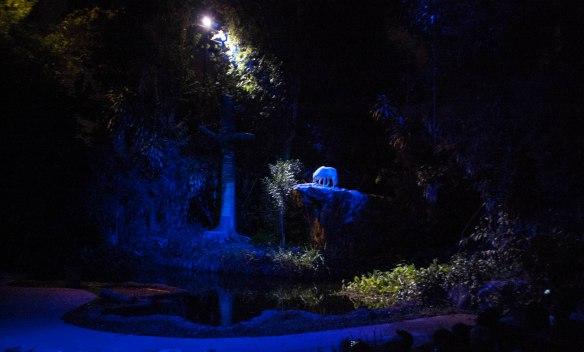 Night Safari (4 von 11)