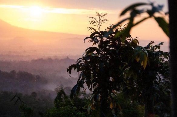 Borobudur-Prambanan (15 von 32)
