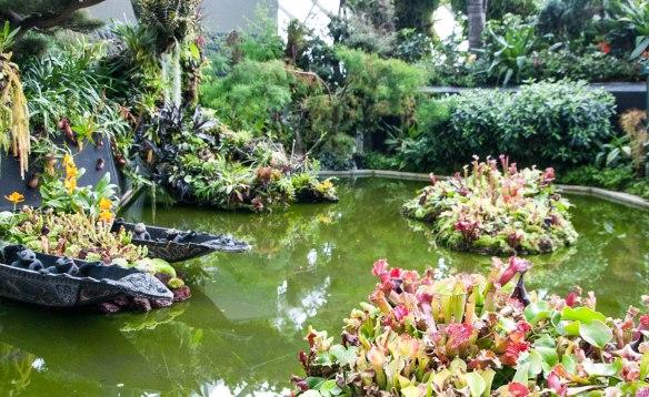 Gardens by the Bay (10 von 22)