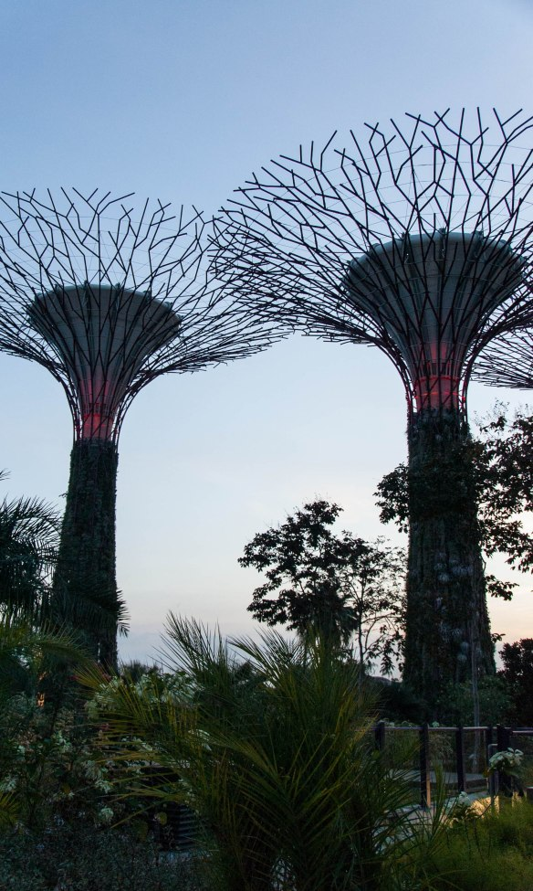 Gardens by the Bay-26
