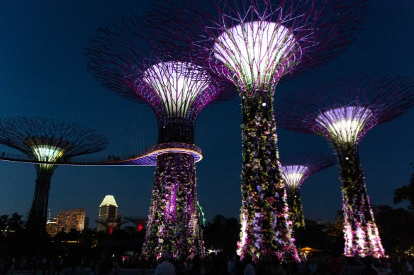 Gardens by the Bay-38