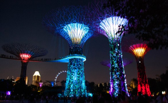 Gardens by the Bay-39